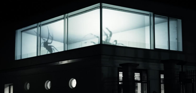 Ämblikud aknal